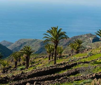 El turismo rural se incrementa un 24% en La Gomera - turismo-alojamiento-rural