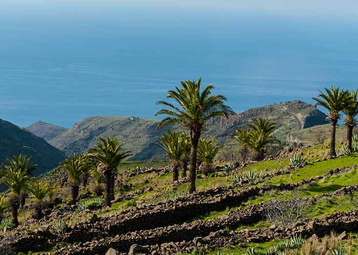 El turismo rural se incrementa un 24% en La Gomera
