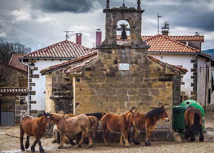 187 establecimientos rurales denunciados en Cantabria en 2014