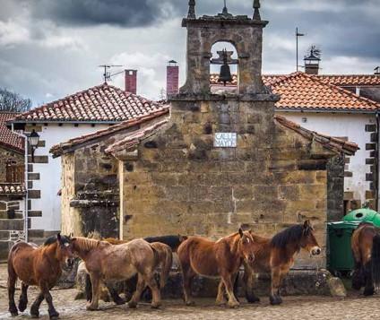 187 establecimientos rurales denunciados en Cantabria en 2014 - turismo-alojamiento-rural