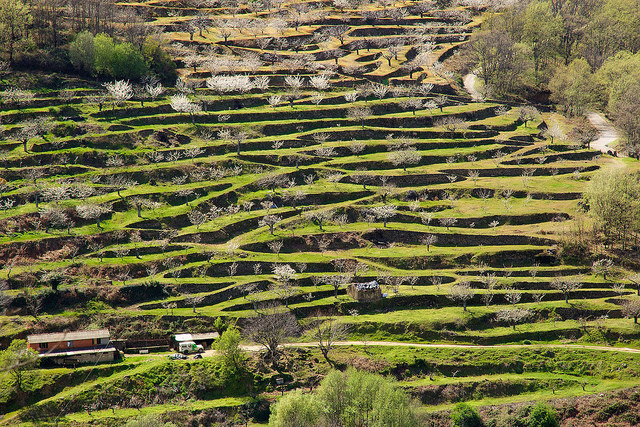 Extremadura cambia el sistema de calificación de las casas rurales