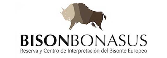 Bison Bonasus en San Cebrián de Mudá, Palencia