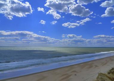 El Parque Natural de Doñana, en la lista verde de IUCN