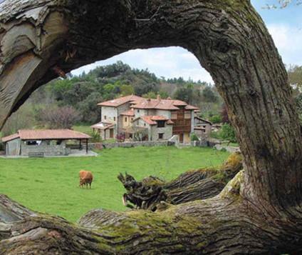 Extremadura, con un aumento del 19% viajeros de turismo rural - turismo-alojamiento-rural