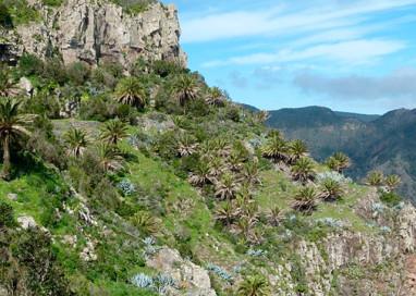Aumenta el número de pernoctaciones de turismo rural en La Gomera