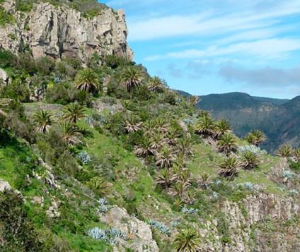 Aumenta el número de pernoctaciones de turismo rural en La Gomera - turismo-alojamiento-rural