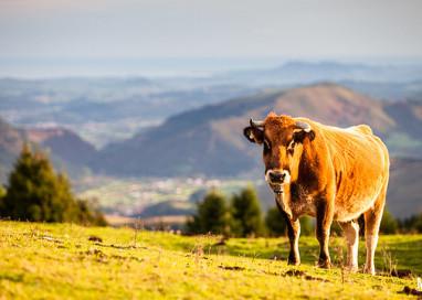 El turismo rural en España repunta en el primer semestre