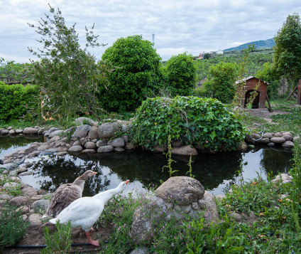 Castilla y León lanza su Central de Reservas de Turismo Rural - turismo-alojamiento-rural