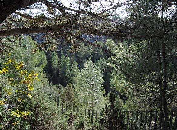 Murcia y Aragón, las Comunidades más baratas para el turismo rural
