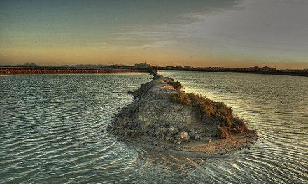 ANSE y su propuesta para mejorar la conservación del Mar Menor