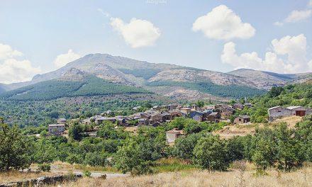 """Guadalajara pone en funcionamiento las """"Rutas de Flora y Miel"""""""