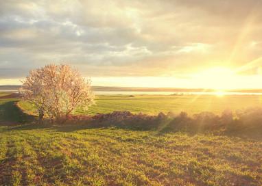 El Gobierno de Aragón potencia los patronatos de los espacios naturales