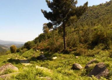Se aumenta la atención a los visitantes del Parque Natural Baixa LImia-Serra do Xurés