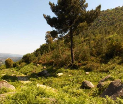 parque-natural-ourense