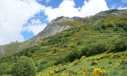 El Parque Natural de Somiedo aumenta sus visitas