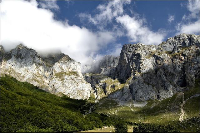 Picos de Europa convoca concurso de Pintura Naturalista