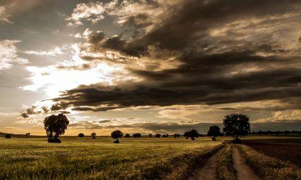 Los pueblos más pequeños de Castilla-La Mancha tendrán prioridad en las ayudas
