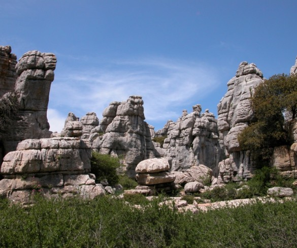 Día de los espacios naturales protegidos de Málaga en la red Natura 2000