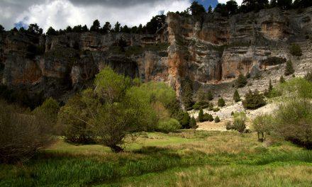 El Cañón del río Lobos luce renovado tras 20 años de trabajos
