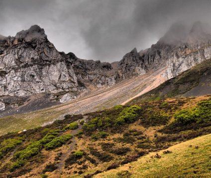 El futuro de Picos de Europa - naturaleza, centenario-picos-de-europa