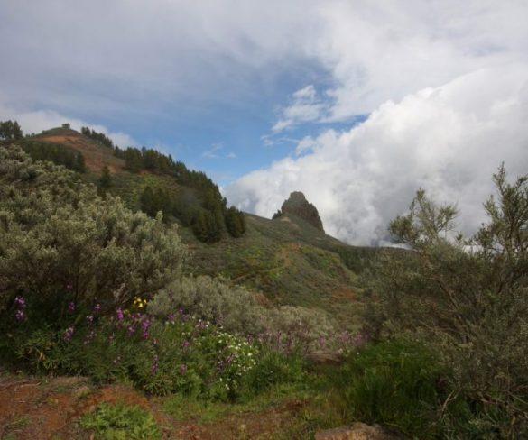 Gran Canaria celebra la  Segunda Feria de Turismo Activo