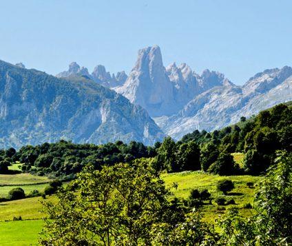 El Parque Nacional de los Picos de Europa se preprara para el verano - naturaleza, centenario-picos-de-europa