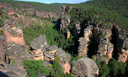 Actividades didácticas para conocer el patrimonio natural de Guadalajara