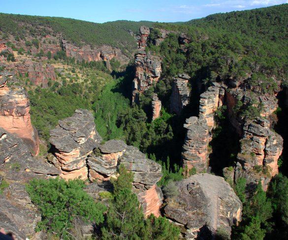 Actividades didácticas para conocer el patrimonio natural de Guadalajara - naturaleza