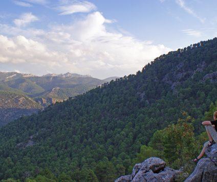El Parque Natural de las Sierras de Cazorla, Segura y las Villas albergan entidades con el distintivo Sicted - naturaleza