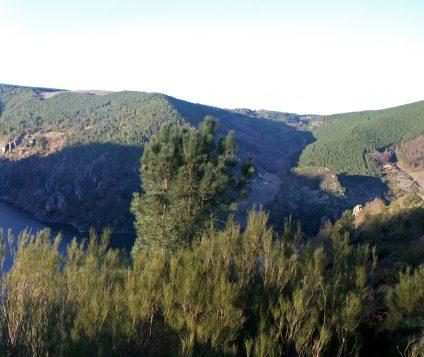 Ribeira Sacra consigue un 96% de ocupación este agosto. - turismo-alojamiento-rural