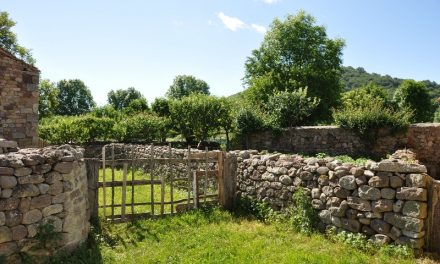 Descubre Fontibre y el nacimiento del Ebro, con Casucas Guariza