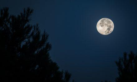 El Parque Natural La Breña y Marismas de Barbate se prepara para la Superluna