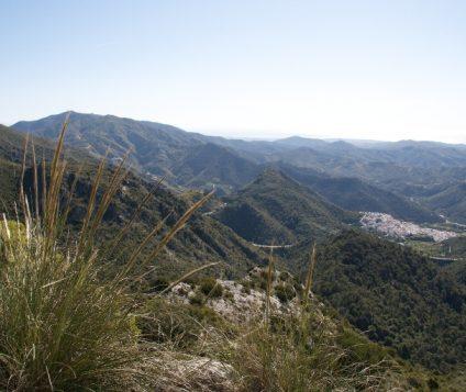 Un paso mas cerca de que la Sierra de las Nieves sea Parque Nacional - naturaleza