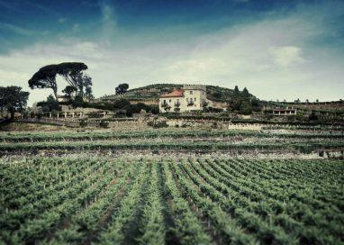 Bodegas Marqués de Vizhoja, premiadas en la Guía de Vinos de Galicia