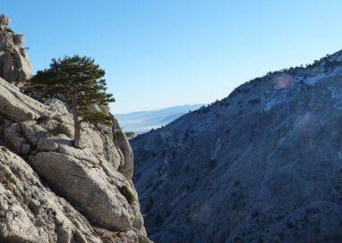 Descubre el entorno natural de Huéscar con El Pinar de La Lobera