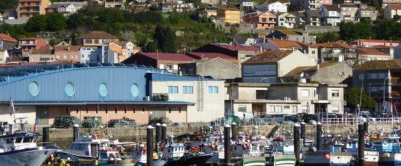 20 empresas consiguen el distintivo SICTED en O Morrazo - pueblos