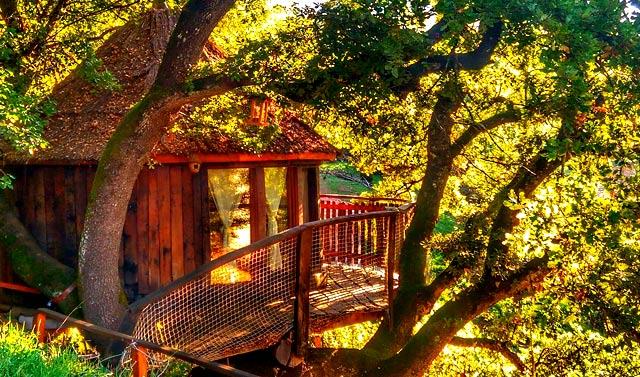 Las mejores caba as en los rboles para dormir en espa a for Alojamientos cabanas en los arboles