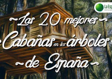 Las mejores cabañas en los árboles para dormir en España