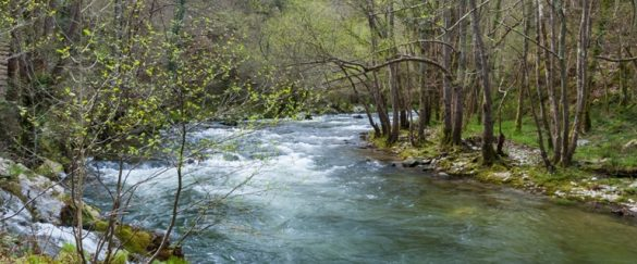 Se ha llevado a cabo la II edición de 1m2 por la Naturaleza - naturaleza
