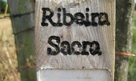 """Se presenta el II Festival del Viño de la Ribeira Sacra"""""""