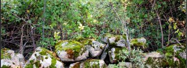 15 rutas digitales para conocer el Parque Nacional Sierra de Guadarrama - turismo-activo