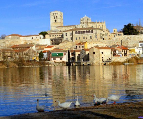 El Ayuntamiento de Villardeciervos y Zamora Natural galardonados en los Premios de Turismo Sostenible - pueblos