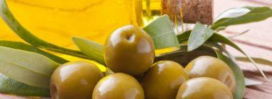La Denominación de Origen Protegida de Siurana estrena página web - gastronomia-restaurantes