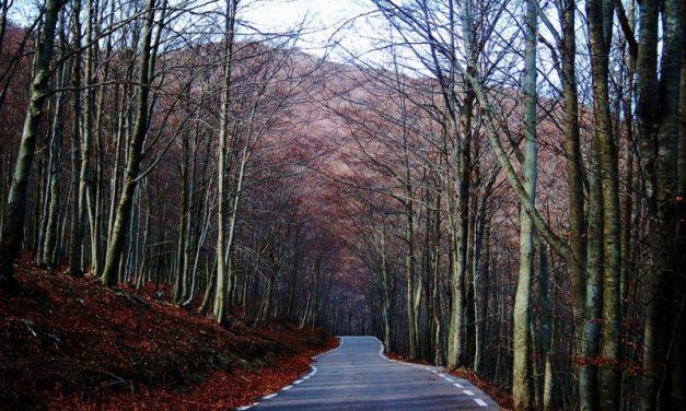 El turismo rural de Cataluña desciende en enero