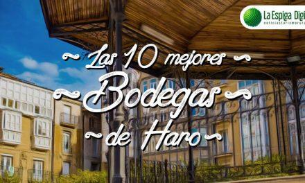 Las 10 Mejores Bodegas de Haro