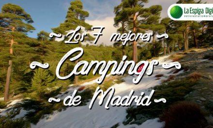 Los 7 Mejores Campings de Madrid