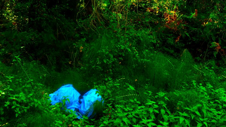 El Parque de la Sierra Norte de Guadalajara eliminará la «basuraleza» el 15 de junio