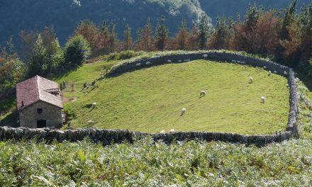 Descenso del turismo rural de Navarra en marzo
