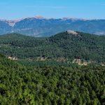 Notable ascenso del turismo rural de Castilla-La Mancha en junio