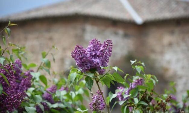 Notable descenso del turismo rural de La Rioja en junio